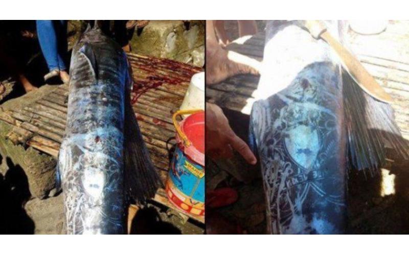 這邊是菲律賓漁民捕獲了「全身刺青的怪魚」引發熱議,仔細看上面的圖騰...起雞皮疙瘩了!圖片的自定義alt信息;545371,725398,K.R,49