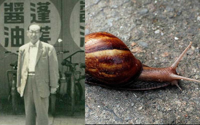 澳男生吞蛞蝓身.亡,台灣也曾出現吃蝸牛致死案例「金蘭醬油家族」多人喪命差點滅門
